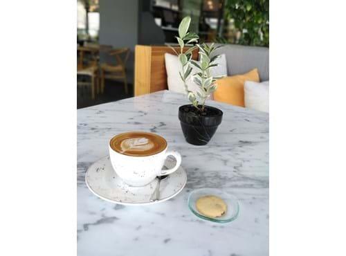 Needion - Cafe Latte