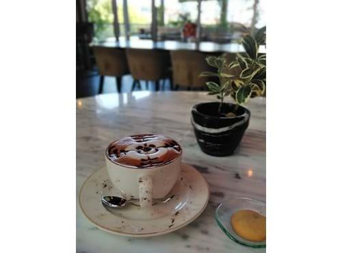 Needion - Cafe Mocha