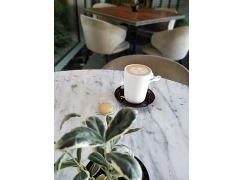 Needion - Chai Tea Latte