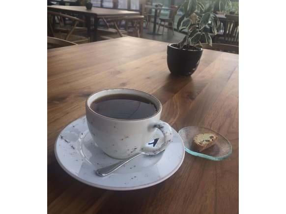 Needion - Fincan Çay