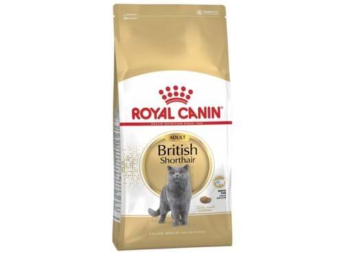 Needion - Royal Canin British Shorthair Adult Yetişkin Kedi Maması 2 Kg