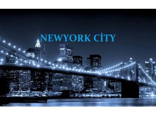 Needion - NEWYORKCTY
